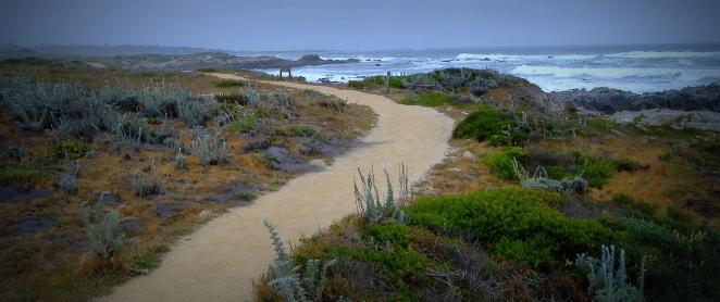 coast trail to beach